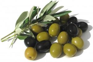 olive-01